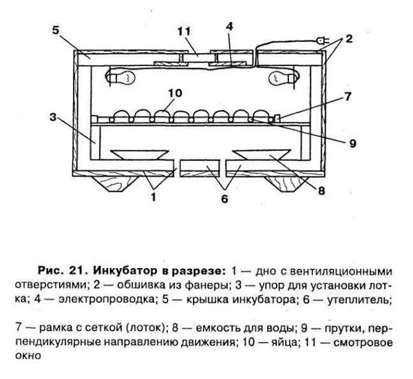 как устроен инкубатор