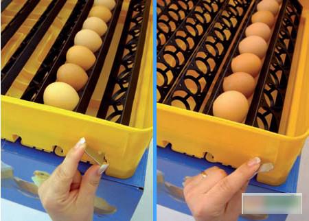 процесс механического переворота яиц